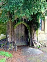 hobbit church